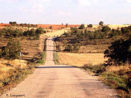 Our destiny is at the end of the road...