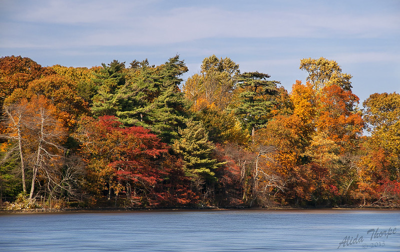 Connetquot River in Autumn