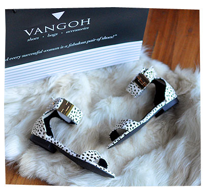 Vangoh Shoes Collection 24
