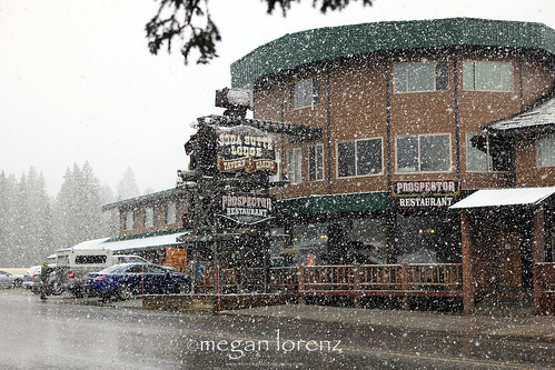 Winter On The Way by Megan Lorenz