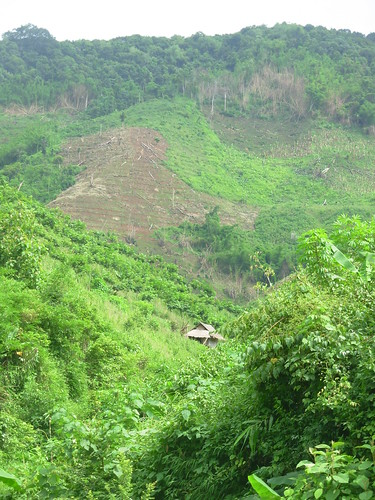 Luang Namtha-Luang Prabang-route (13)