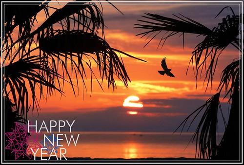 Per il nuovo anno..