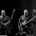 Los Lobos at City Winery 12-31-13 2
