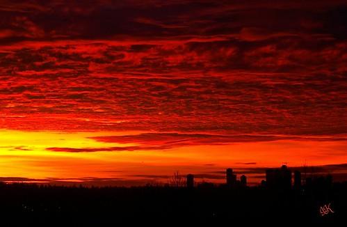 trees sunset sky skyline clouds skies silhouettes sunsets redsky sunsetclouds redclouds burnabybc treesilhouettes sunsetskies redsunsets allclouds sunsetoutlines cityinsilhouette