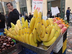 bananas Monassteriuk Square by Julie70