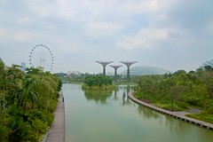 Gardens by the Bay with Super Trees and Singapore Flyer