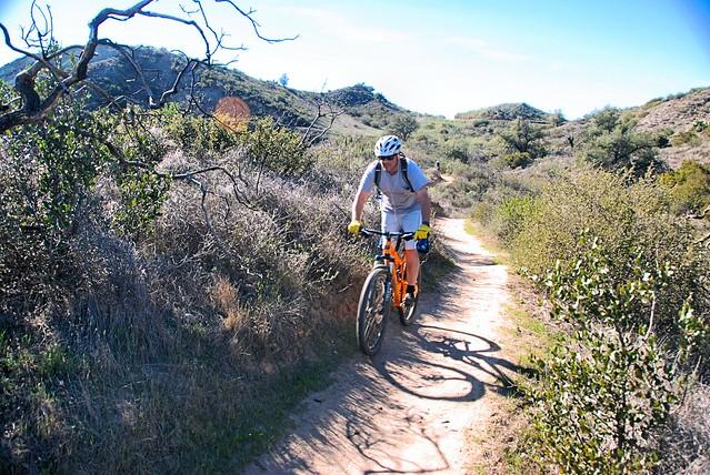 Cactus Hill Trail