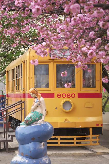Tokyo Train Story 都電荒川線 2014年4月13日