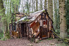 "Packwood Follies ""InsideOutHouse"" by Hilary Jack by anthsnap!"