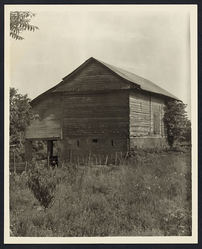 Unidentified cabin, Natchez vic., Adams County, Mississippi (LOC)