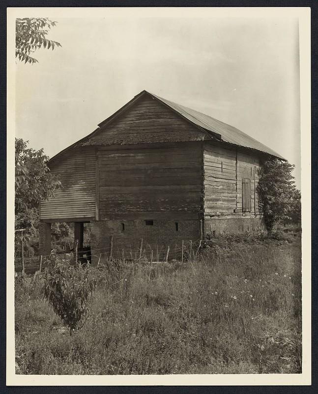 Unidentified cabin, Natchez vic., Adams County, Mississippi (LOC)