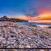 Seashells at Jupiter Island Beach Sunrise Over Ocean by Captain Kimo