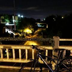 Brand-new yarned biking