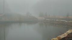 Enchanting Misty pond