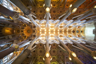 Image of Basilica de la Sagrada Família near Gràcia. spain travel architecture barcelona catalunya ceiling church colors europe geometry indoor interior lights pov simmetry gaudí crazytuesdaytheme maketheworldmorecolorful 7dwf