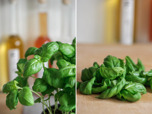 Focaccia & Pesto Buns