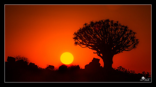 Sunrise in the Quivertree Forest, Namibia.
