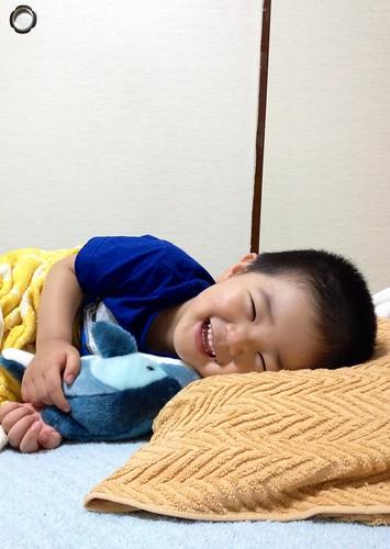 ころころとらちゃん 2013/6/2