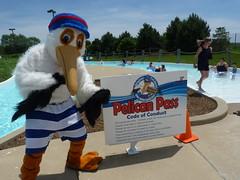 Parkie the Pelican