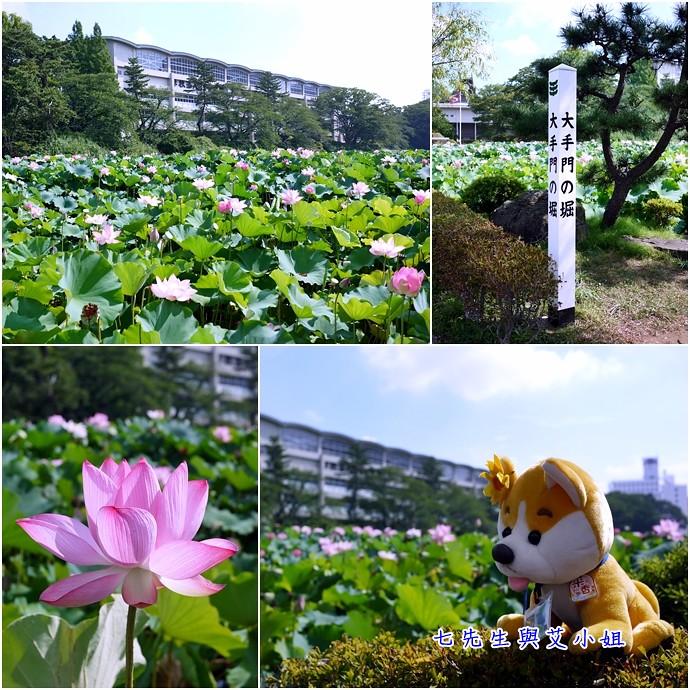 5 秋田千秋公園