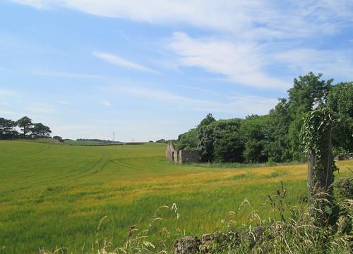ruin and field