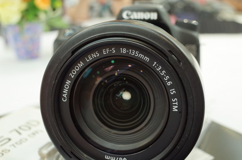 Canon EOS 70D with 18-135mm STM f/3.5-5.6 Lens