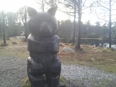 wooden forest bear