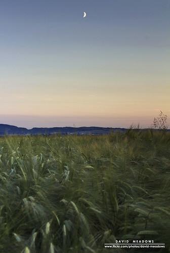 sunset moon field rural landscape evening scotland countryside farm country farming meadow crescent crop crops agriculture glade dumfries galloway arable torthorwald davidmeadows dmeadows davidameadows dameadows