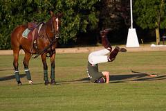 Sandhurst Polo Club exhibition polo