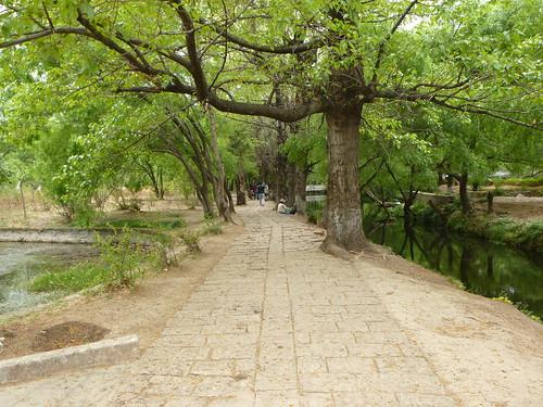 Yunnan13-Shuhe-Nature (2)