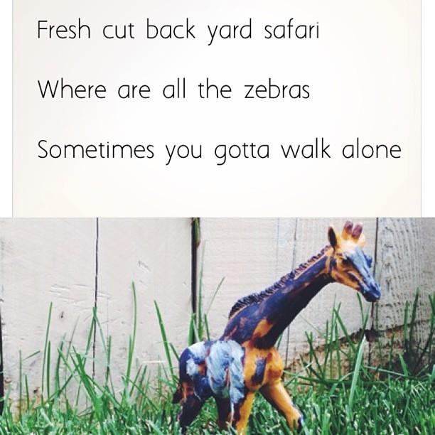 Blue giraffe #heyku