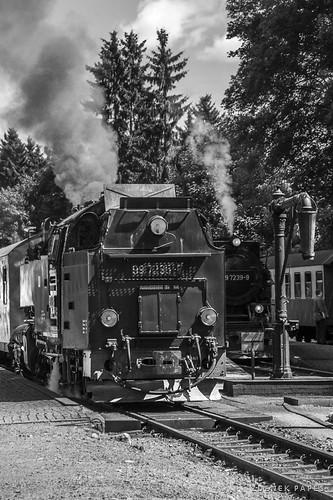 Schmalspurbahn Harz by Zdenek Papes