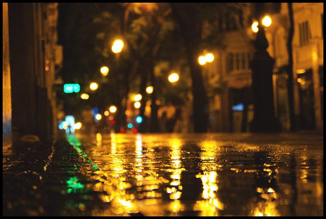 Rain over my words.
