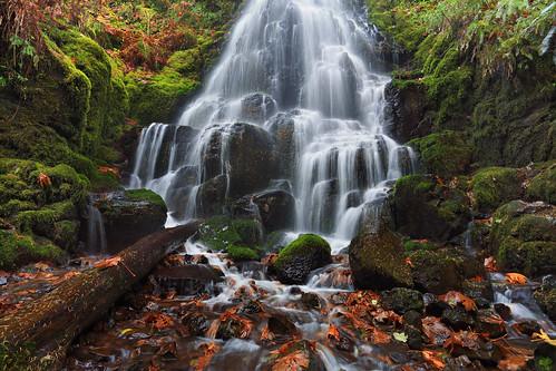 green oregon creek river waterfall moss columbia falls fairy gorge wahkeena