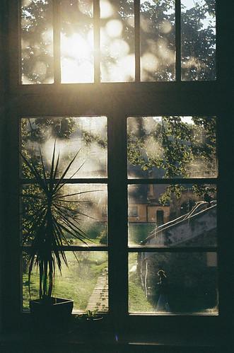 Glistening Window