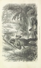 """British Library digitised image from page 376 of """"Explorations and adventures in Equatorial Africa; with accounts of the manners and customs of the people and of the chace of the gorilla, crocodile, leopard, elephant, hippopotamus and other animals. (Seco"""