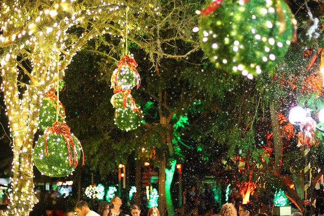 Christmas town 2013 at busch gardens tampa flickr - Busch gardens tampa christmas town ...