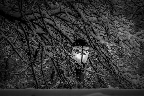 NYC Snow 2014, B&W