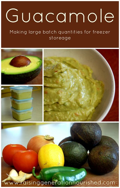Guacamole :: Making Large Batch Quatities for Freezer Storage