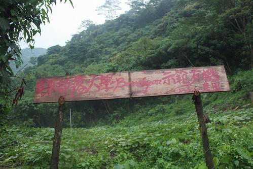 圖1平和部落示範有機農園,戴瑋熠拍攝