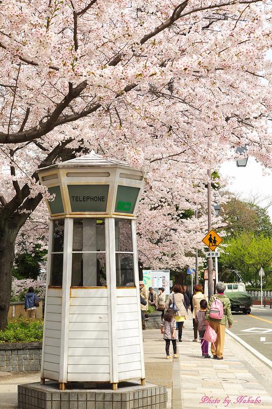 元町公園 by Nakabo