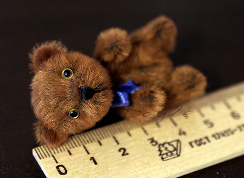 Mini teddy bear Tot