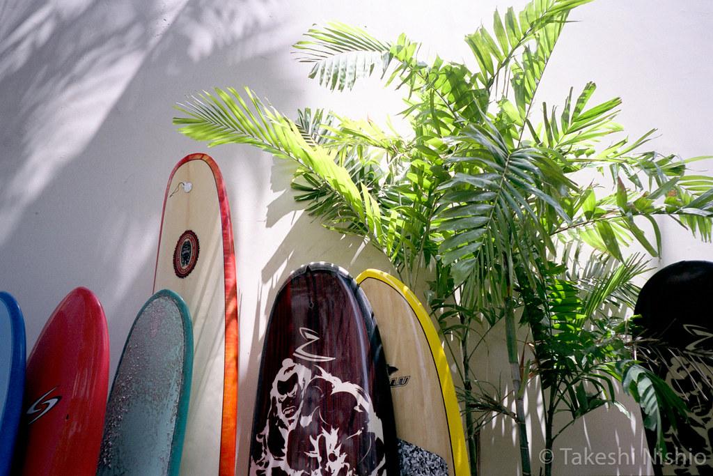 surfbords