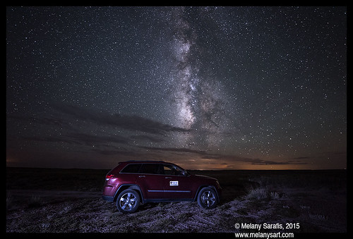 Night Shift in the Petrified Forest