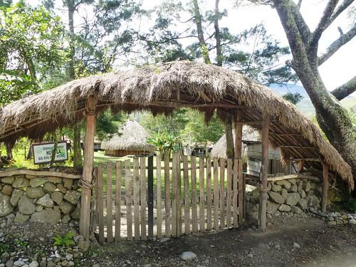 Papou13-Wamena sud-Sugokmo (98)