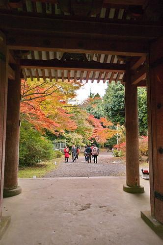 【写真】2012 紅葉 : 醍醐寺/2020-08-07/IMGP6868