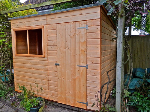 The Shed, Day 4 -Nearly Finished! by Irene's Daily Pics