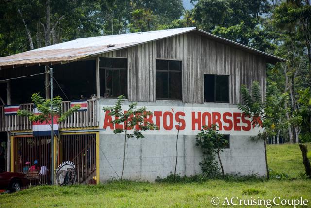 Albertos Horses Horseback Riding Tours Costa Rica