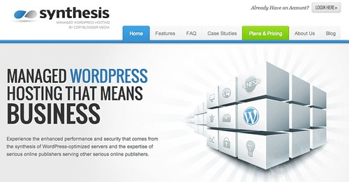 Synthesis web hosting review