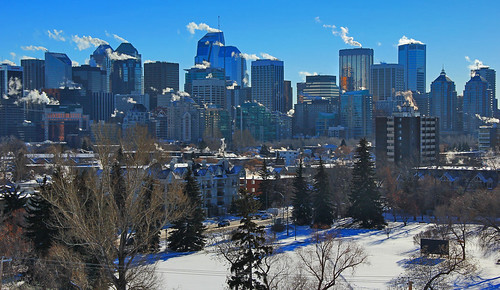 morning trees houses winter light sky urban snow cold ice glass field sunshine skyline architecture clouds canon buildings reflections frozen downtown shadows skyscrapers structures engineering steam bushes capitolhill highrises sait davidsmith downtowncore calgaryalbertacanada eos60d